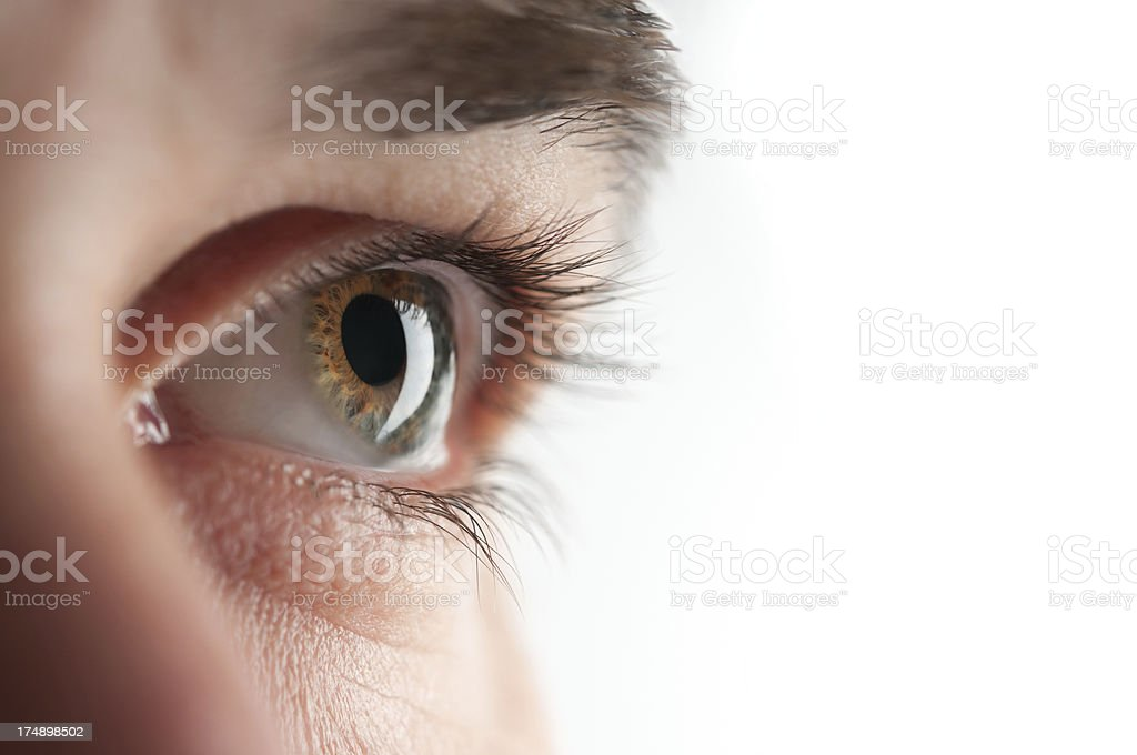 Closeup of a hazel eye looking ahead royalty-free stock photo