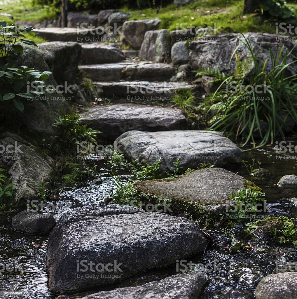 Closeup of a large stone pathway with greenery on each side stock photo