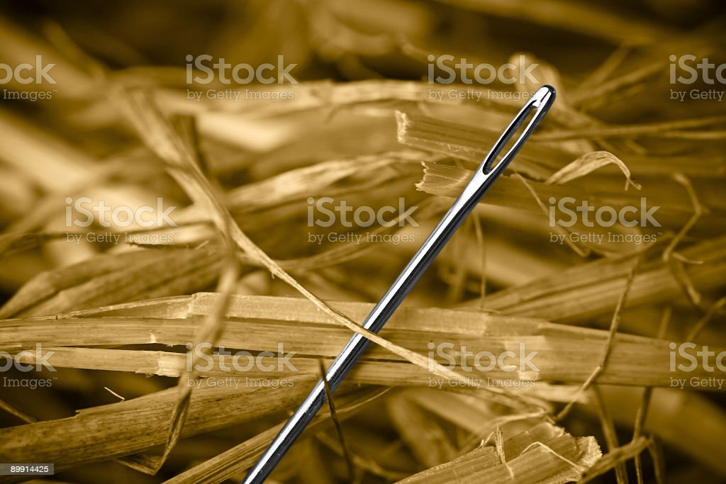 Closeup of a Metal Needle In A Haystack stock photo