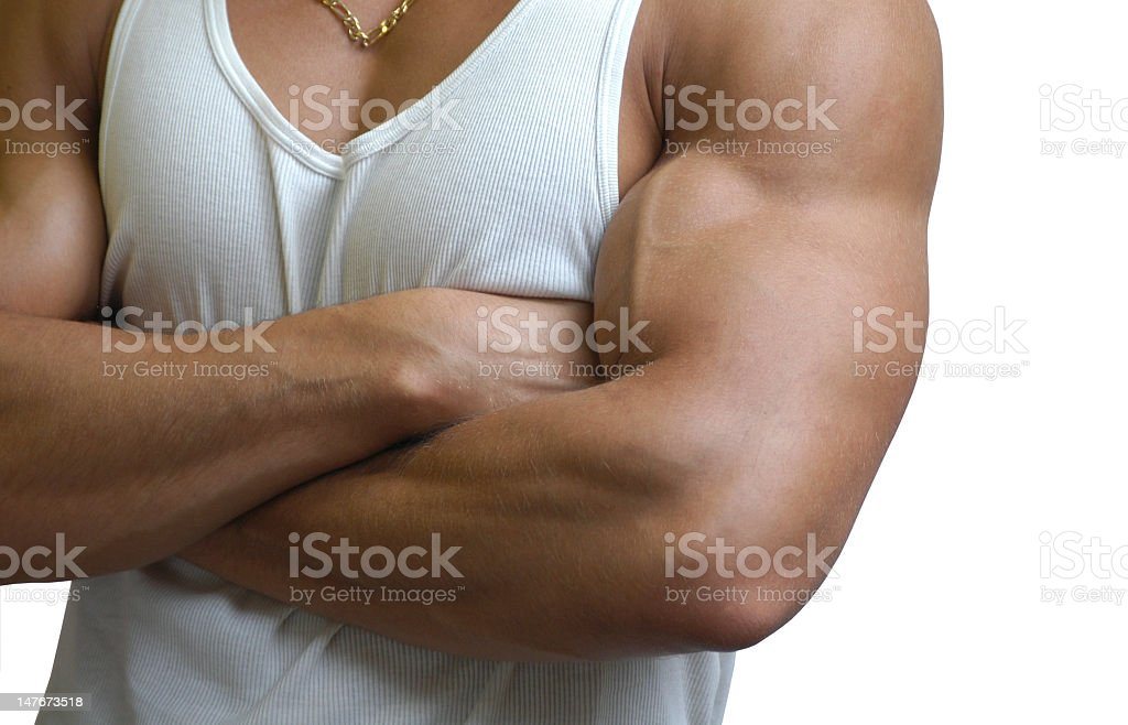 Close-up of a muscular male torso on a white background royalty-free stock photo