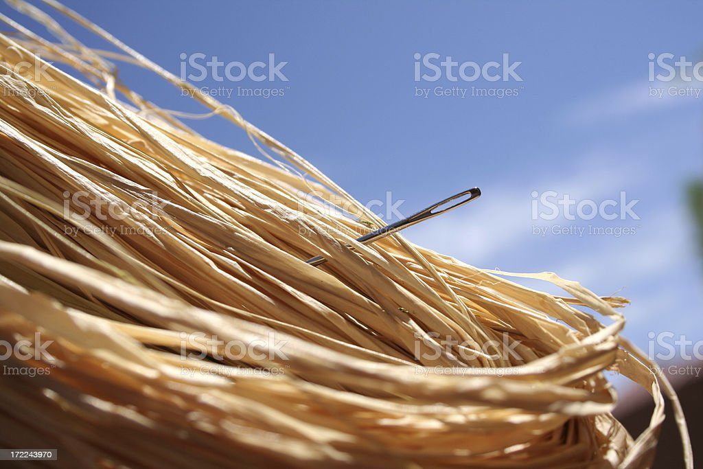 Close-up of a needle in a haystack against a blue sky stock photo