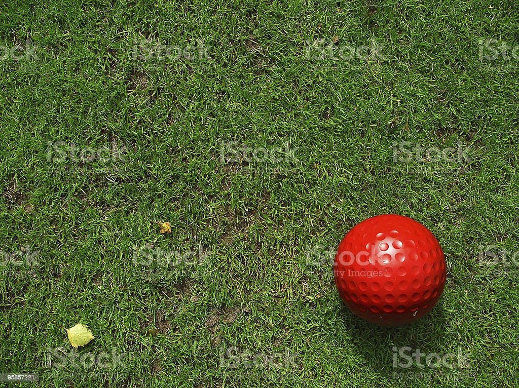 Closeup of a red golfball on green grass  royalty-free stock photo