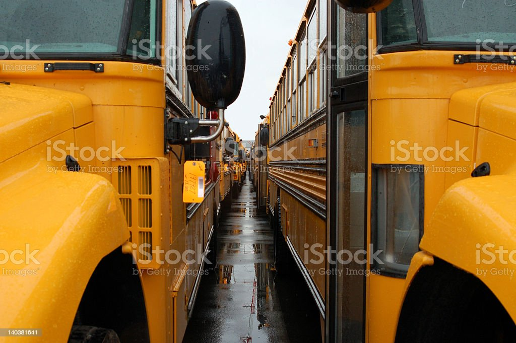 Closeup of a row of school buses royalty-free stock photo