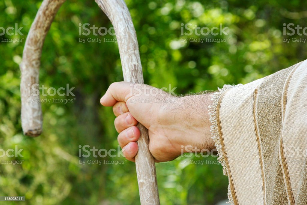 Closeup of a shepherd's hand holding a wooden crook stock photo