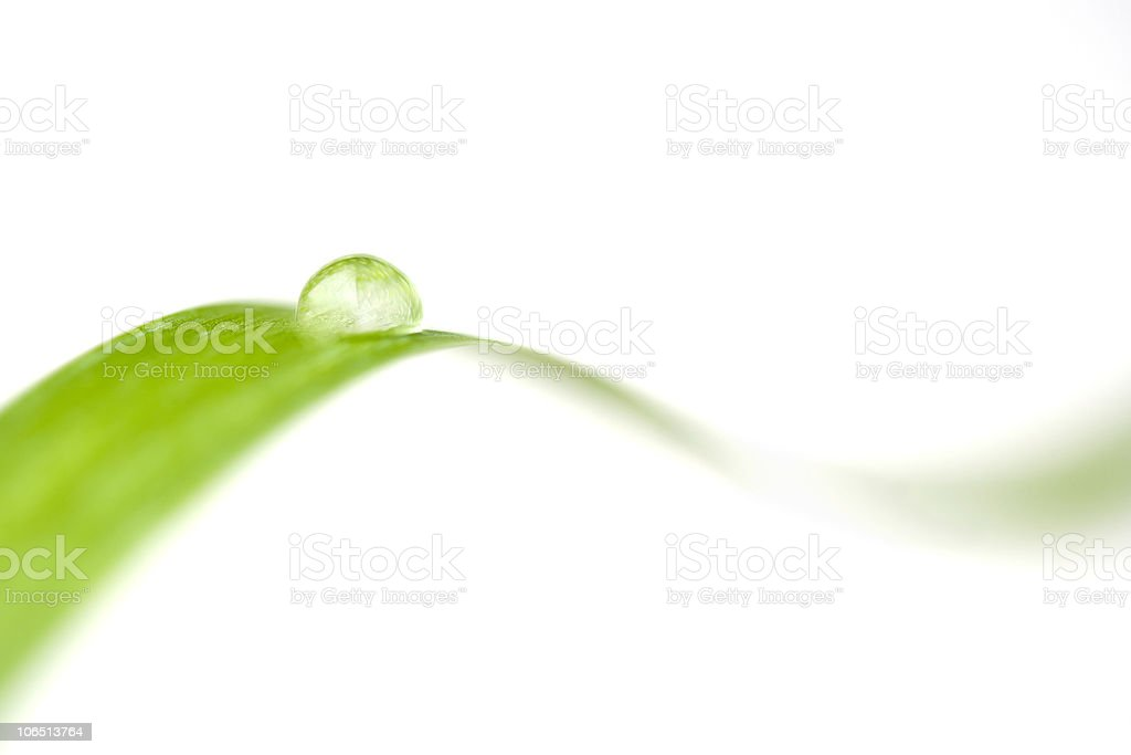 Close-up of a water drop on a leaf stock photo