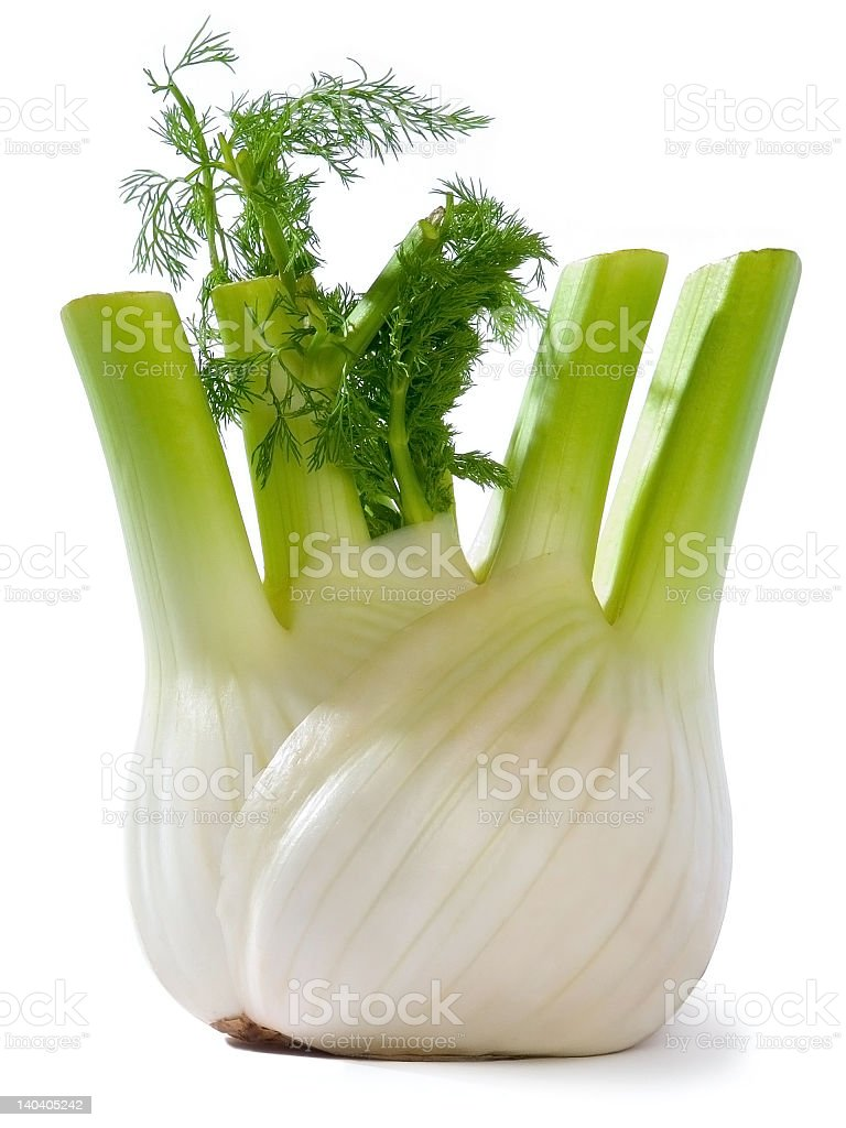 Close-up of a white and green flowering fennel stock photo