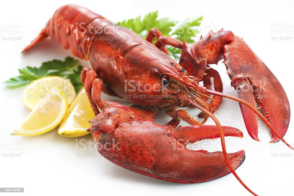 Close-up of a whole lobster and lemon slices stock photo