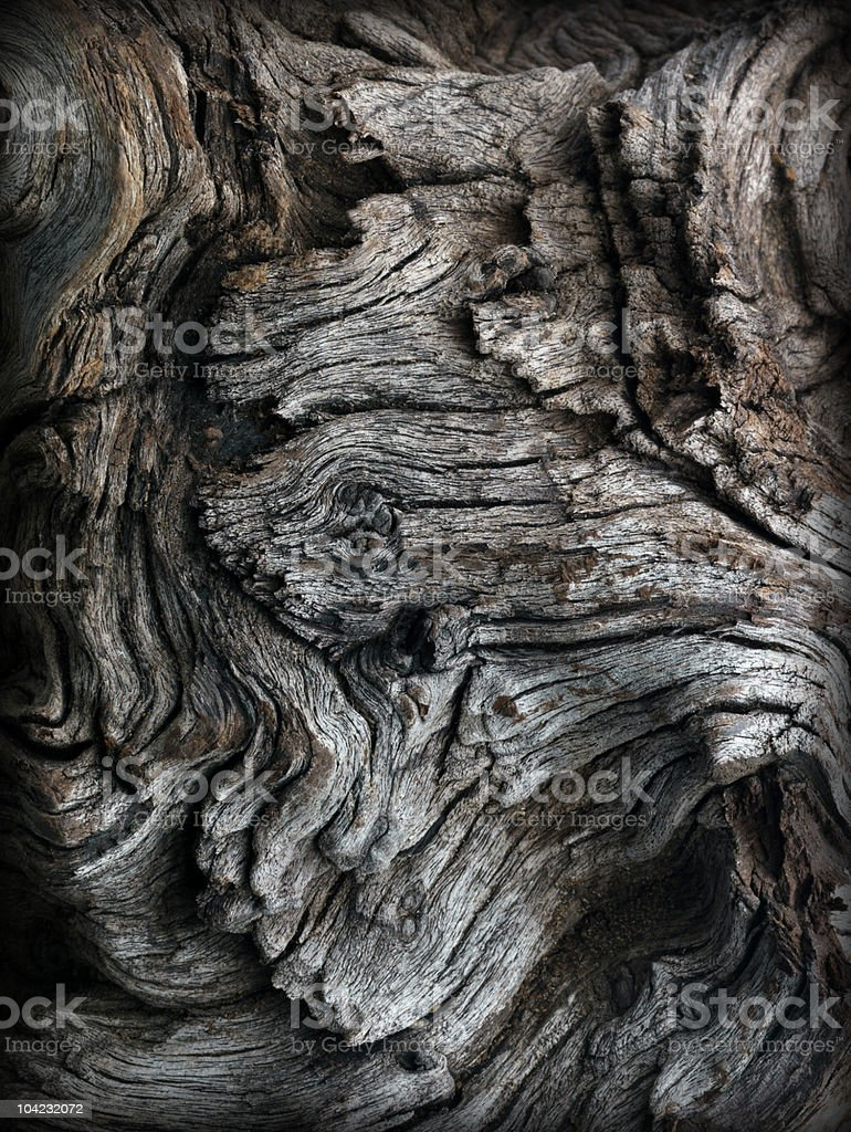 Close-up of aged gnarled driftwood royalty-free stock photo