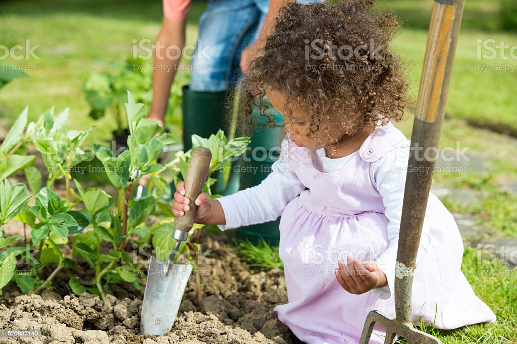 Close-up Of Biracial Little Girl Using A Garden Trowel stock photo