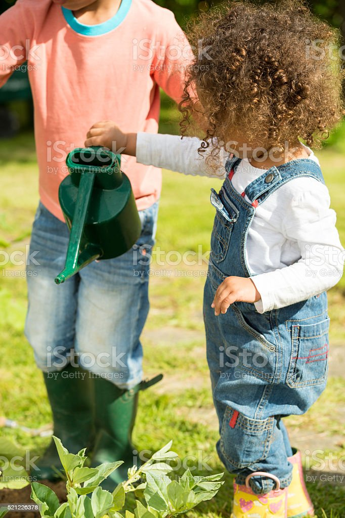Close-up Of Biracial Little Girl Watering Vegetables stock photo
