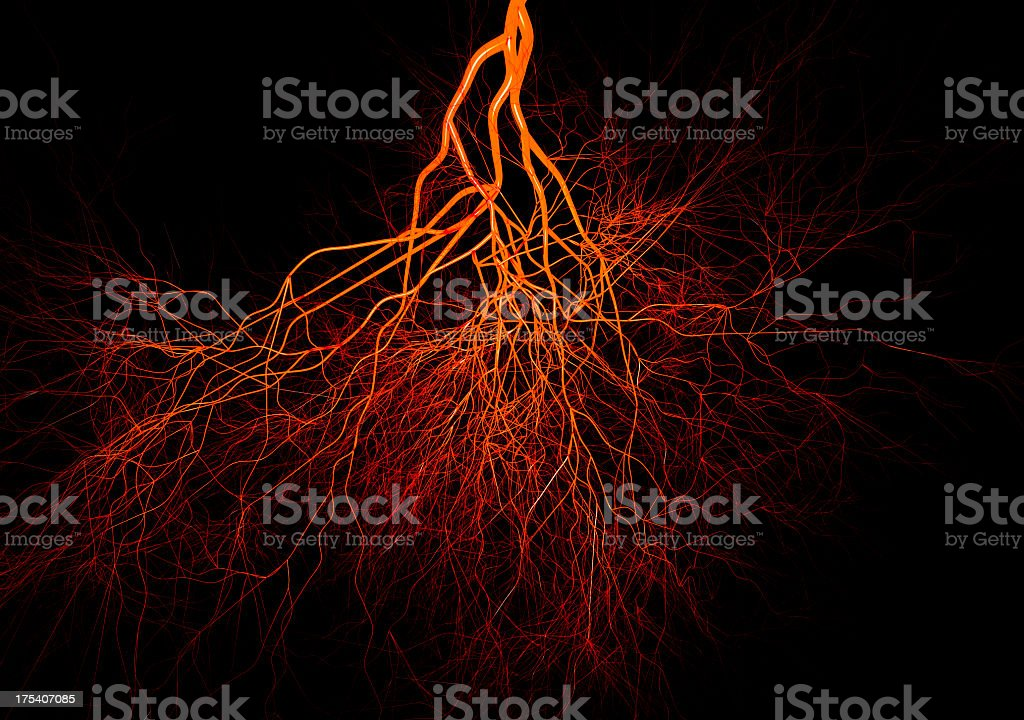 Closeup of blood vessels colored in red and orange stock photo