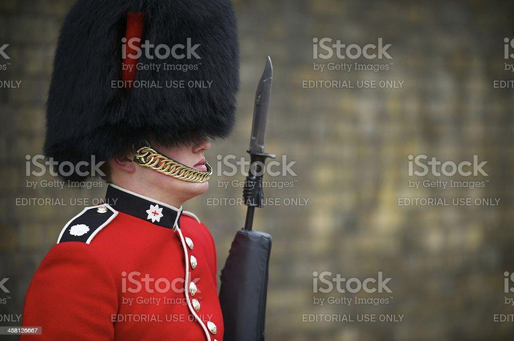 Close-Up of British Royal Foot Guard with Bayonet London royalty-free stock photo