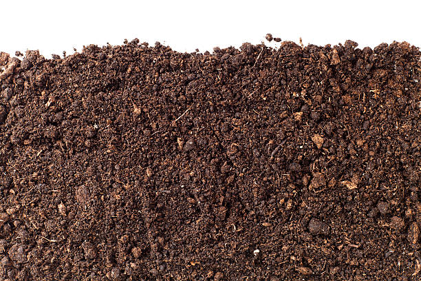 Dirt pictures images and stock photos istock for Soil in english