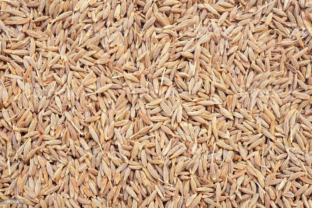 Closeup of caraway-seeds stock photo