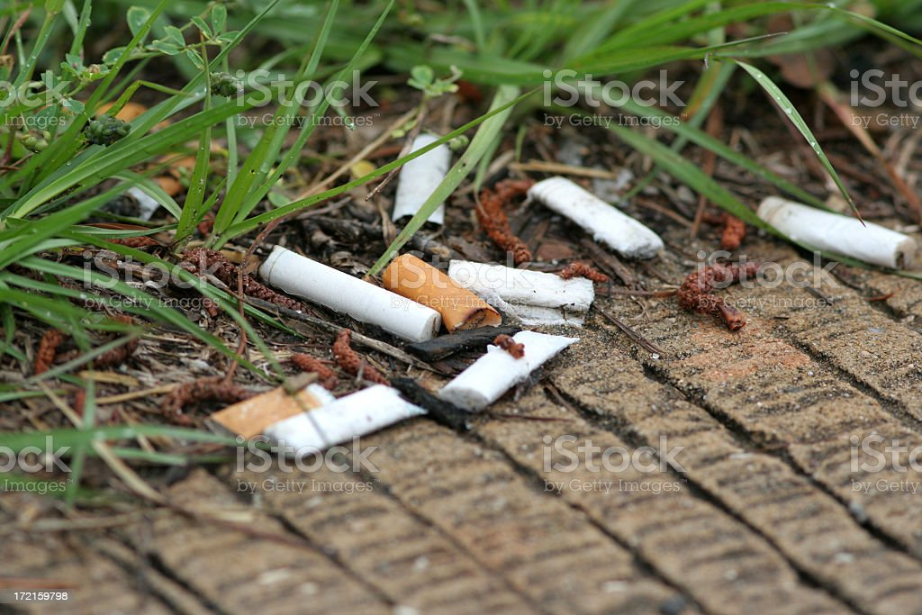 Close-up of cigarette butts lying on a grass lined walkway stock photo