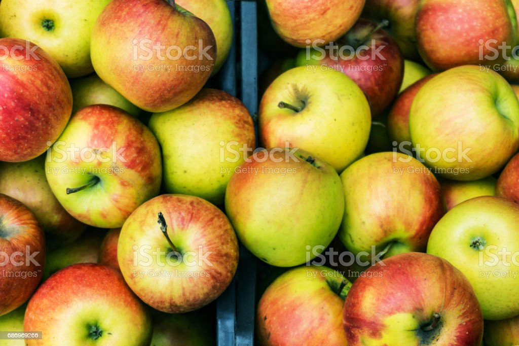 Closeup of crates of juicy, fresh, ecologically produced apples, Fuji, without nitrates in the market for fruit and vegetables. stock photo