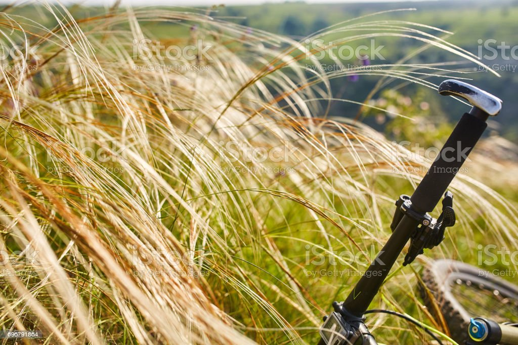 Close-up of detail of the mountain bicycle on the green grass. stock photo