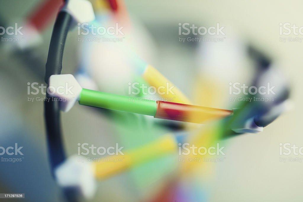 closeup of DNA strand royalty-free stock photo