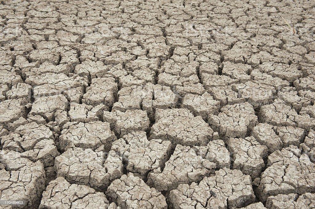 Closeup of dry soil royalty-free stock photo