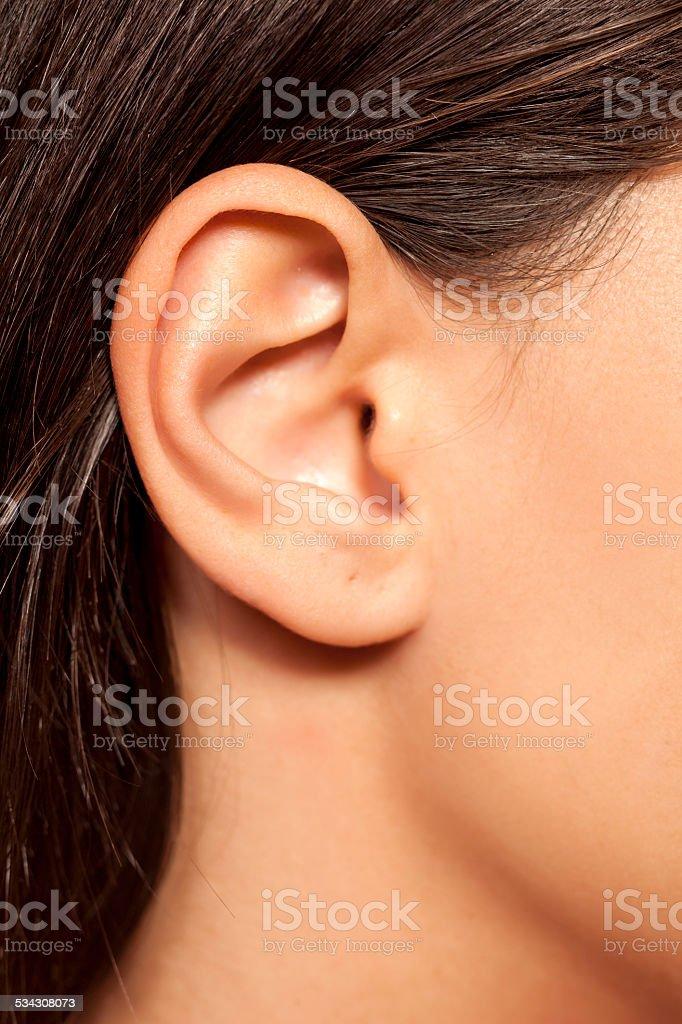 Close-up of female ear stock photo