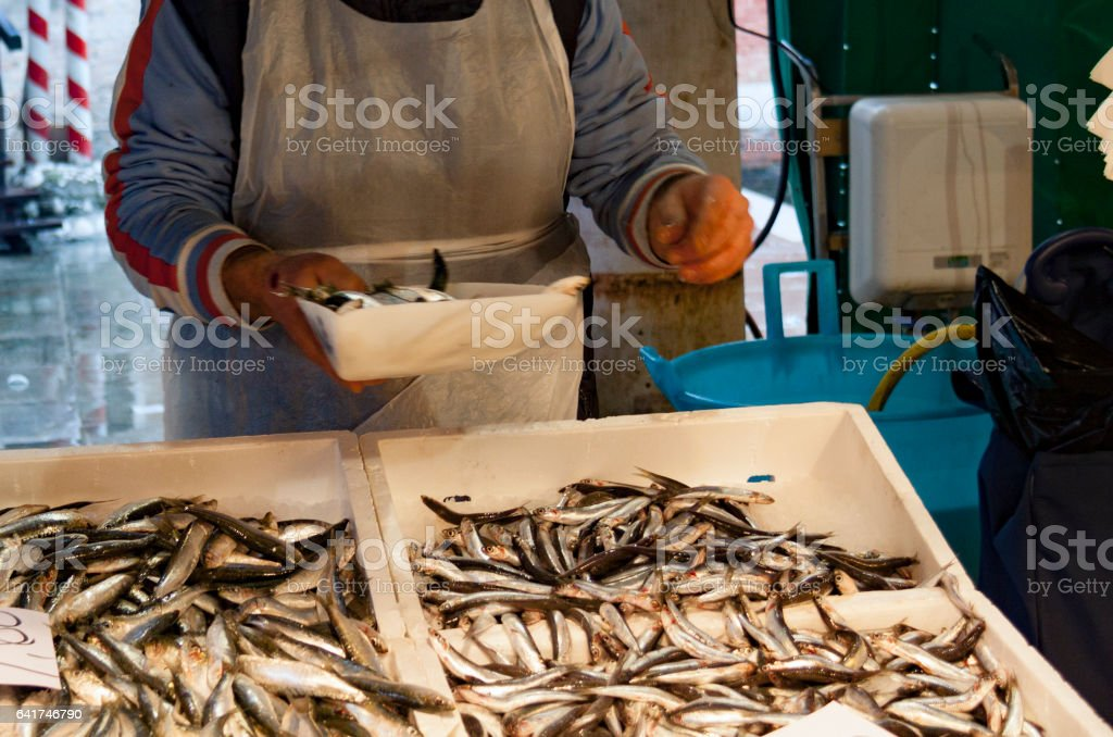 Close-up of fish and shrimps stock photo