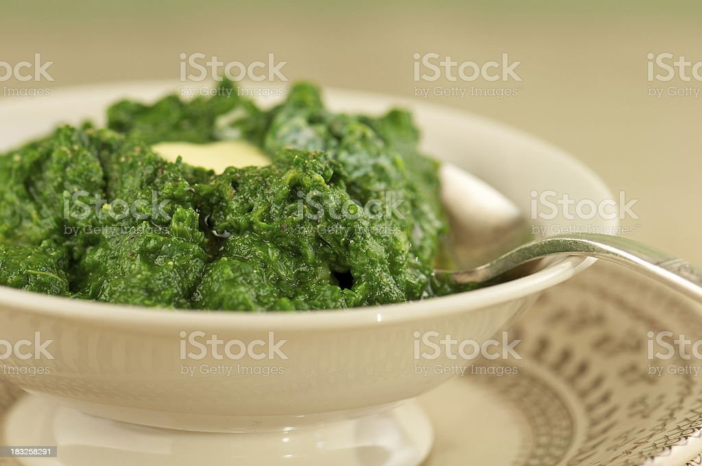 Close-up of Fresh Spinach Puree in Bowl royalty-free stock photo