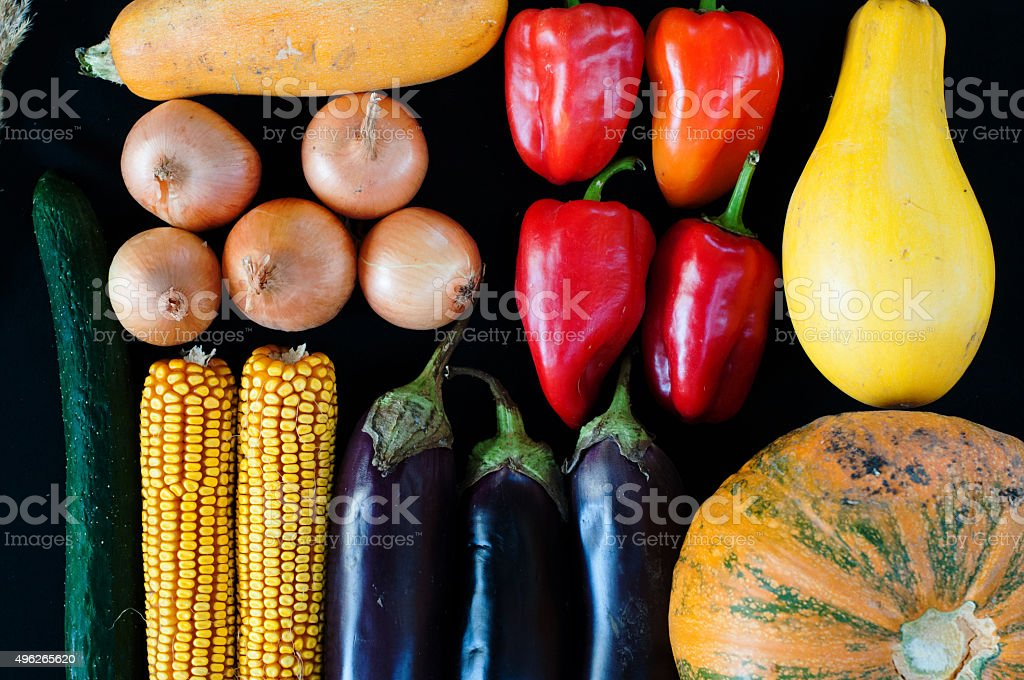 Closeup of freshly harvested vegetables royalty-free stock photo