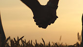 Closeup of gay couple holding hands  each other in wheat