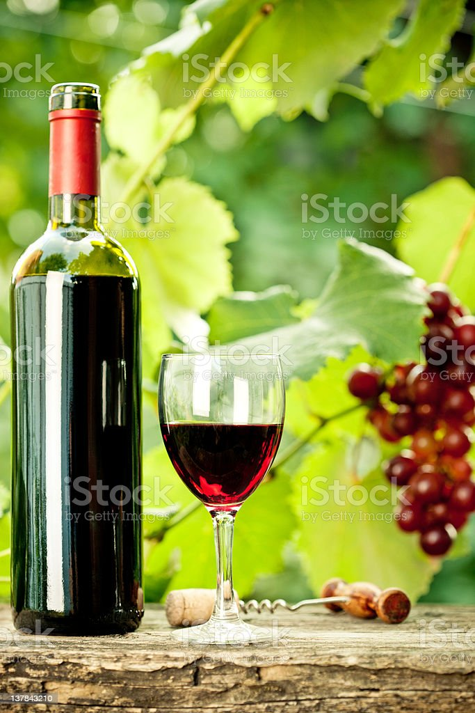 Close-up of generic bottle of red wine, glass and grapes royalty-free stock photo