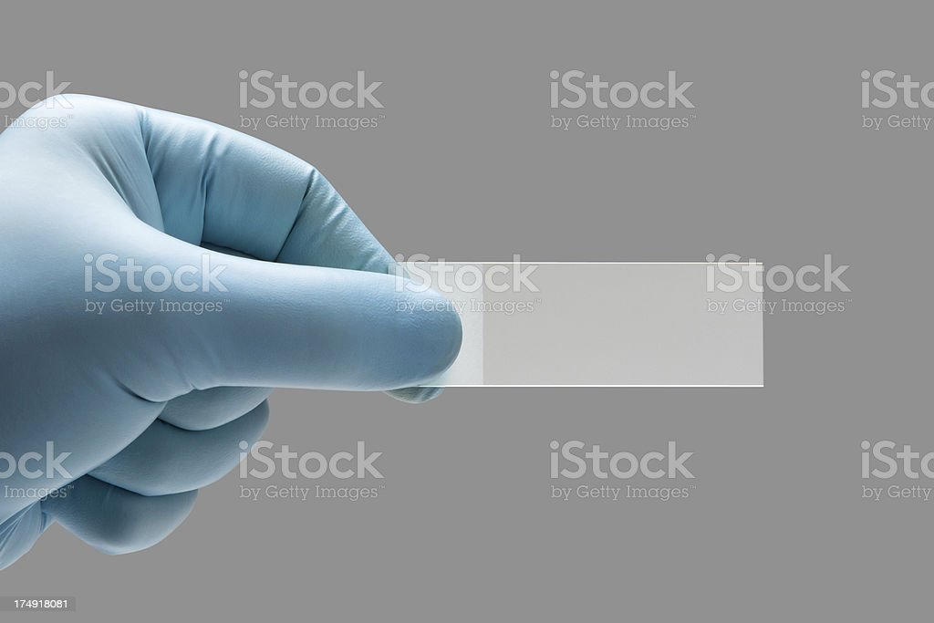 Close-up of glass microscope slide held by sugical gloved hand stock photo