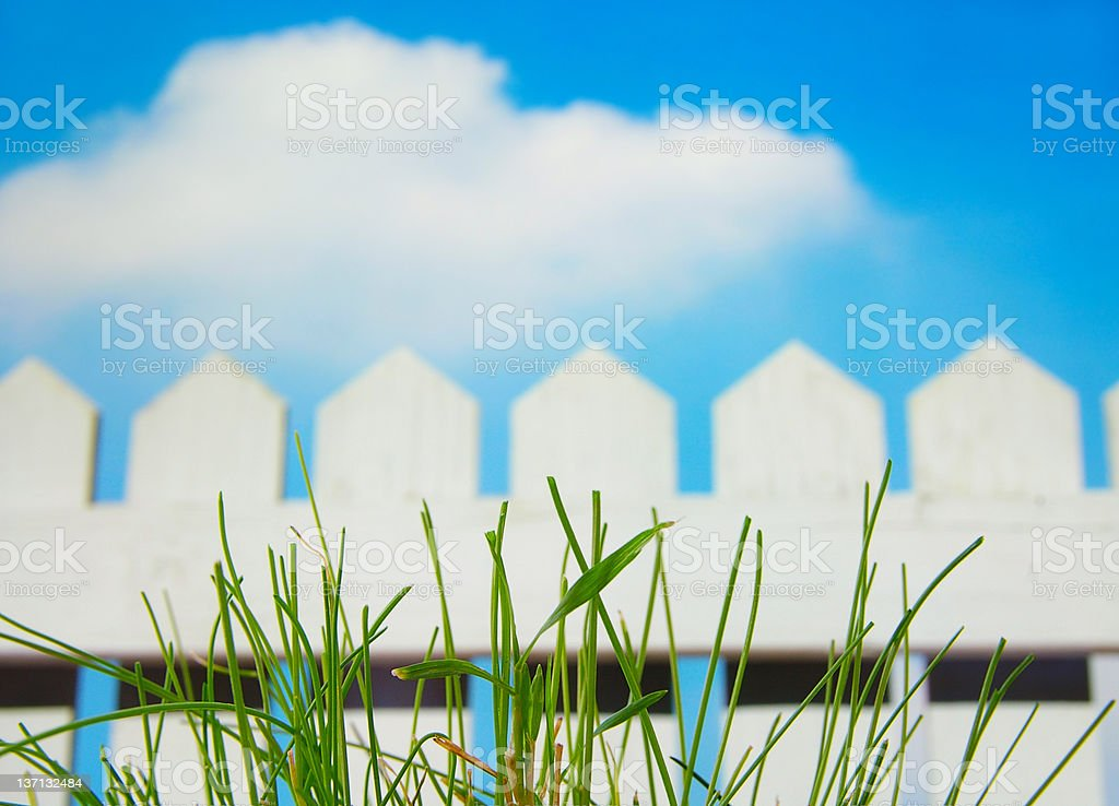 Closeup of grass in front of a white picket fence royalty-free stock photo