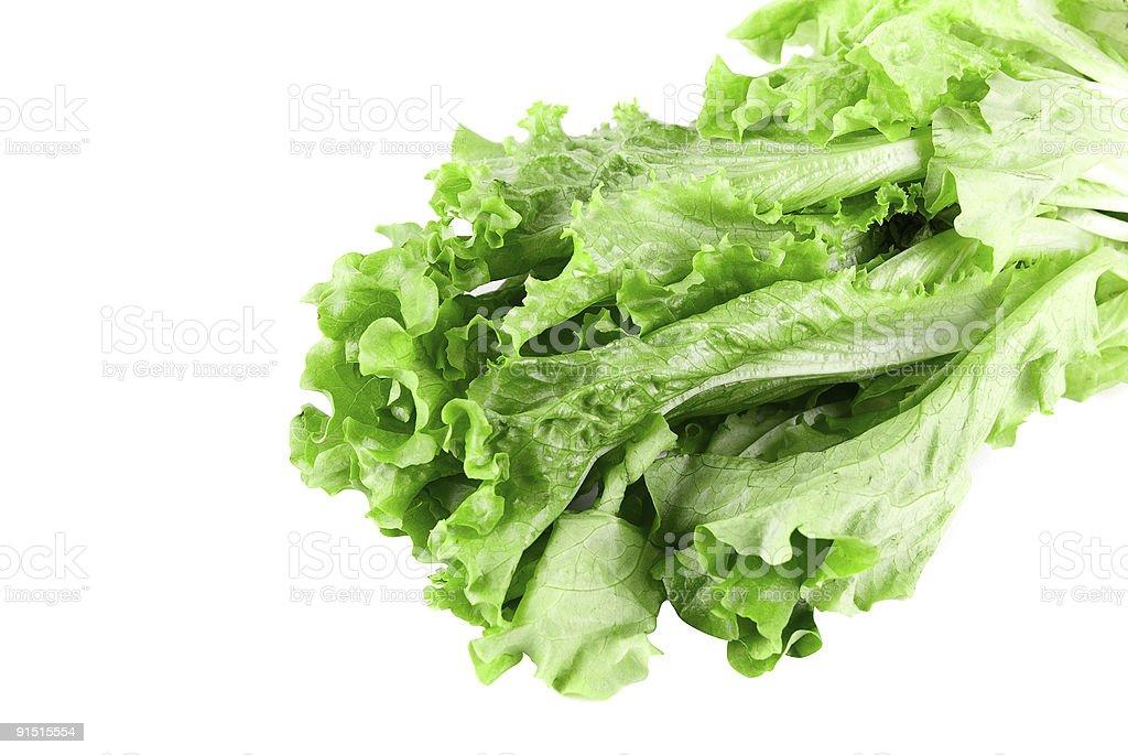 Gros plan de salade verte photo libre de droits