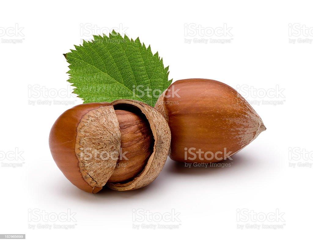 Close-up of hazelnuts isolated on white background stock photo