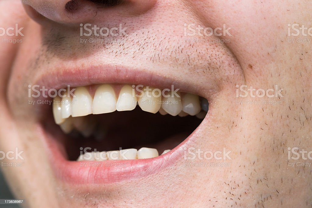 Close-up of healthy smile full of teeth royalty-free stock photo