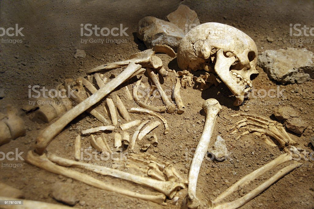Close-up of human remains in soil stock photo