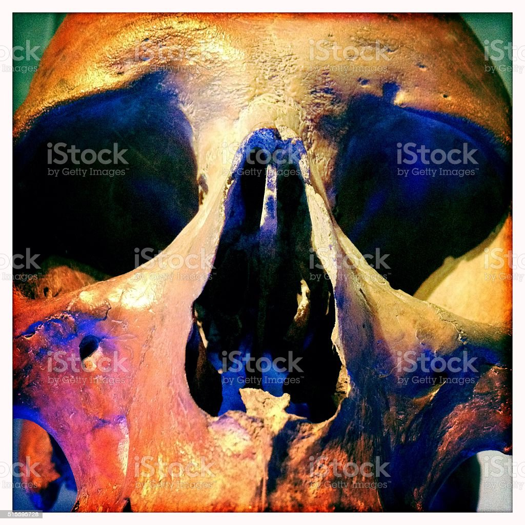 Close-up of human skull stock photo
