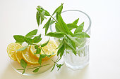 Closeup of ingredients for fresh lemonade