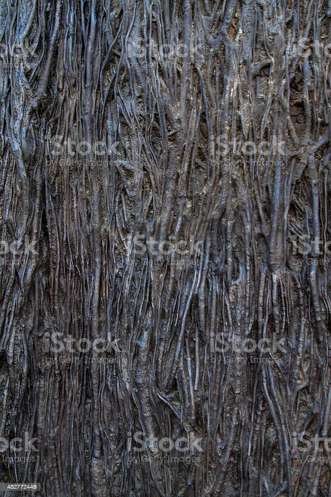 Close-up of  interlaced roots royalty-free stock photo