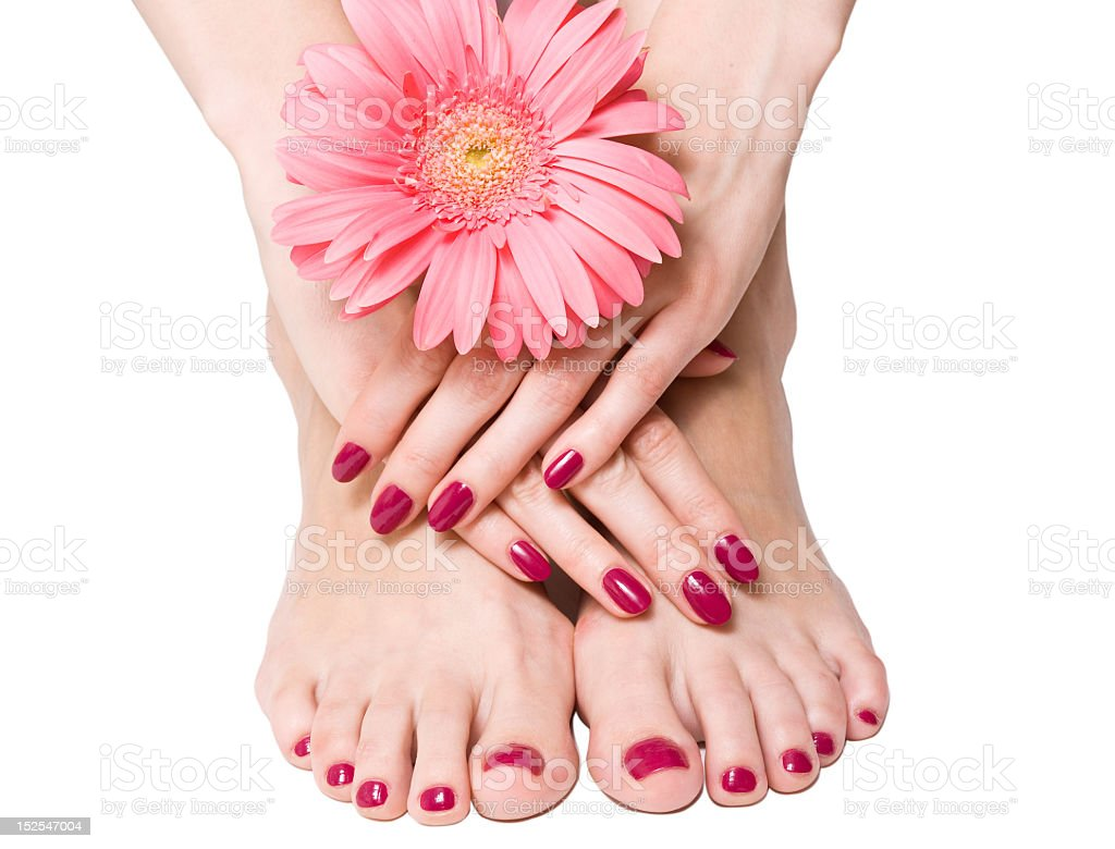 Close-up of manicured and pedicures nails with flower royalty-free stock photo