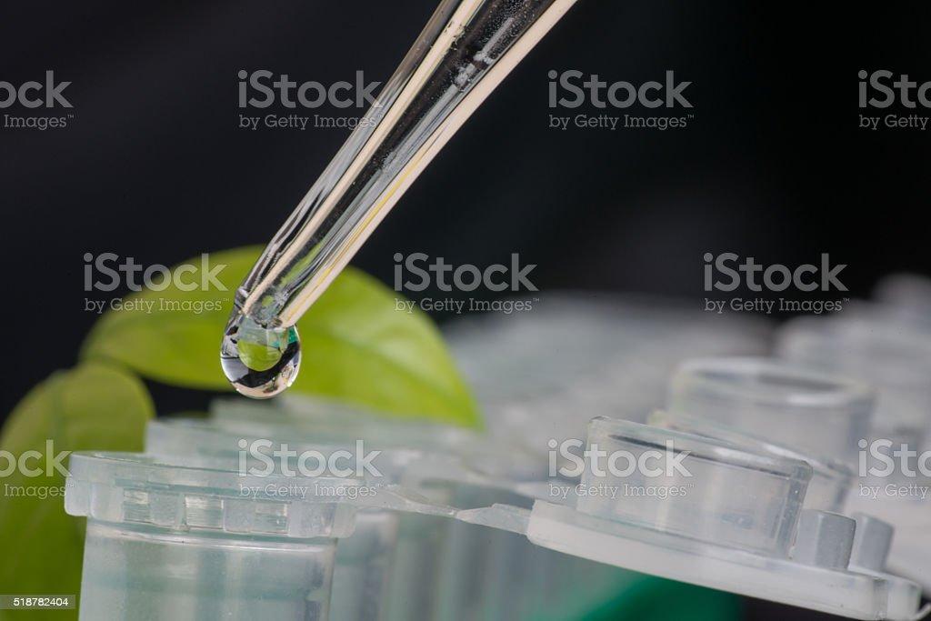 Close-up of microcentrifuge tube stock photo
