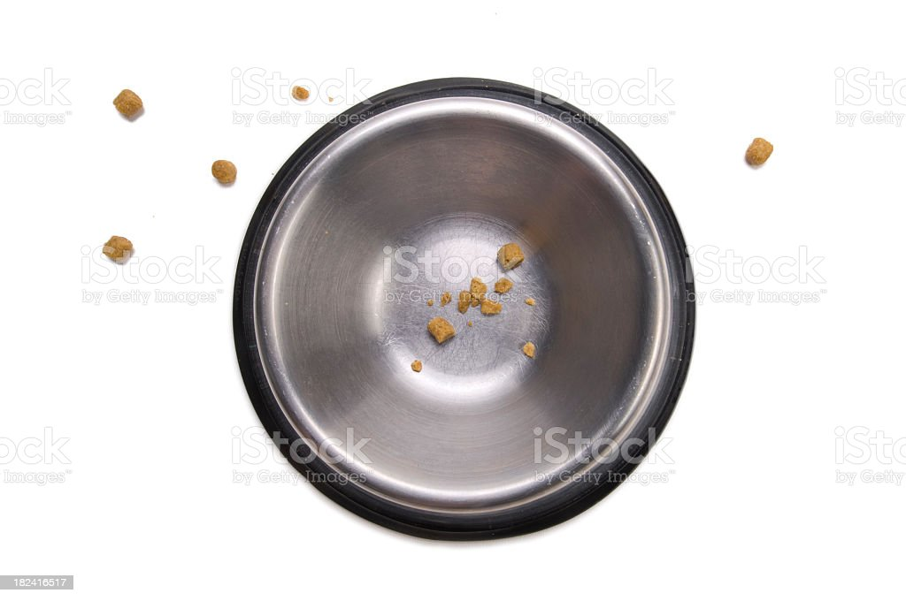 Closeup of mostly empty metal dog bowl and bits of food stock photo