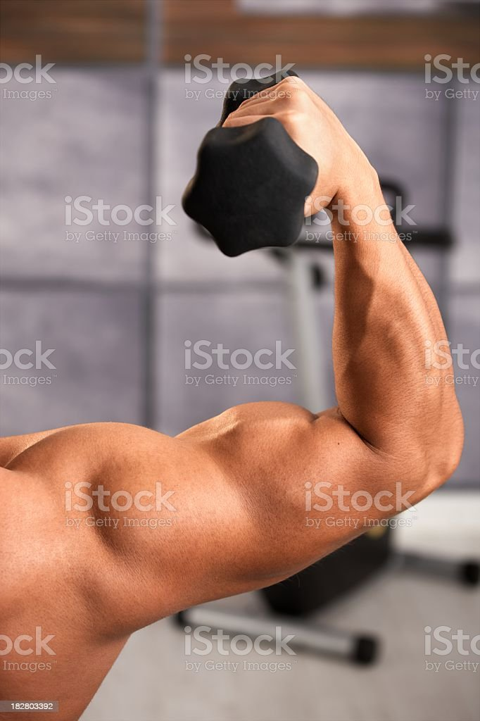 Close-up of muscular bicep during exercise royalty-free stock photo