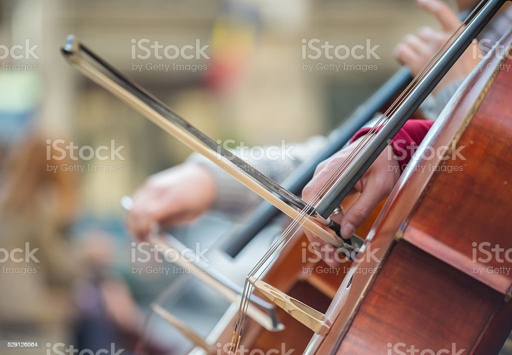 Closeup of musicians hands playing on a contrabass stock photo