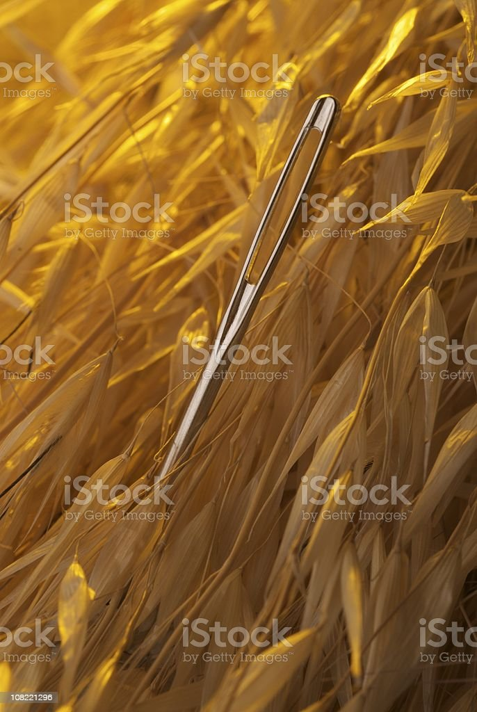 Close-Up of Needle Laying in Hay Stack stock photo