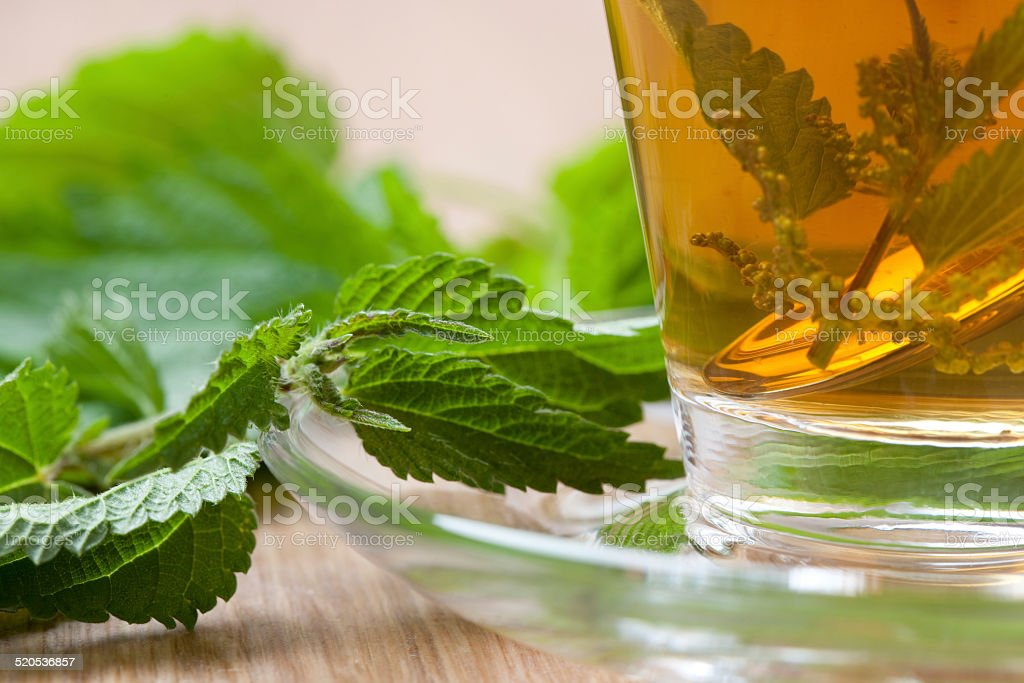 closeup of nettle tea with nettle blossom inside teacup stock photo