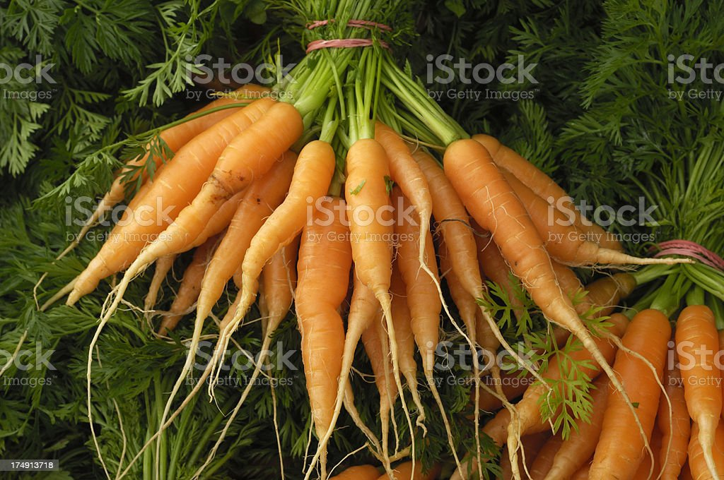 Close-up of Organic Carrots Being Processed royalty-free stock photo