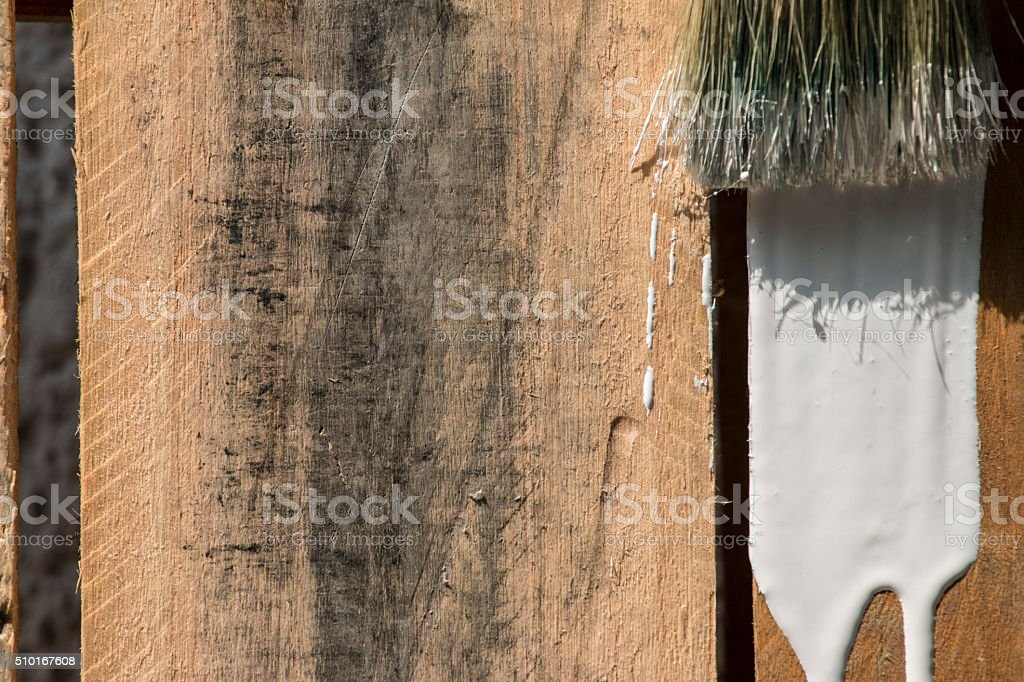 Closeup Of Pine Plank Being Painted In White Color stock photo