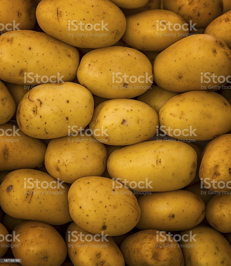 Closeup of Potatoes royalty-free stock photo