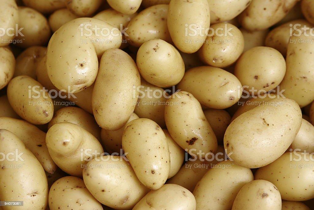 Close-up of potatos royalty-free stock photo