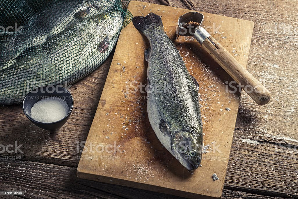 Closeup of preparing fish for dinner in the countryside royalty-free stock photo